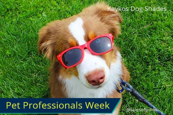 Kaykos Dog Shades, smiles back guaranteed!