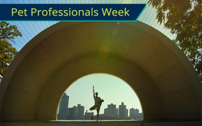 Pet Professionals Week  – San Francisco Pet Professionals