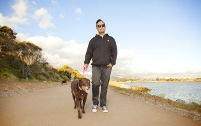 San Francisco Dog Walking Etiquette