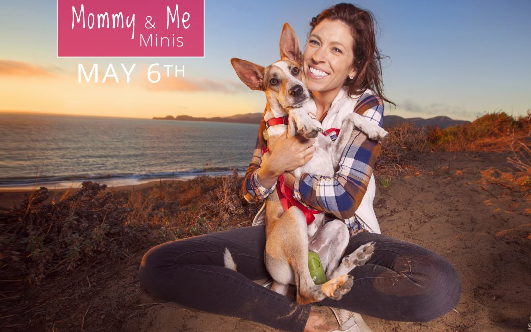 Attention Dog Moms – Mother's Day Minis Are Here!